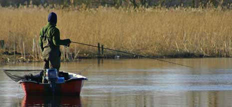 Gäddmete - bland det häftigaste fiske vi har!
